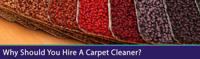 Advantages - What Can A Carpet Cleaning Company Do For You