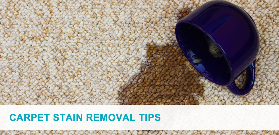 The best carpet stain removal tips pro carpet cleaning brisbane - Tips cleaning carpets remove difficult stains ...